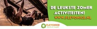 logo Flevonice